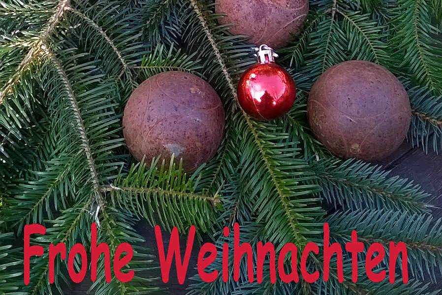 frohe_weihnachten_ausschnitt